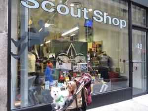 Scout Store in Manhattan
