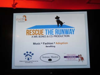 Rescue the Runway 030