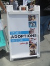 Maddie's Fund Adoption event 002