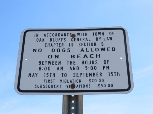 Oak Bluffs Beach Rules