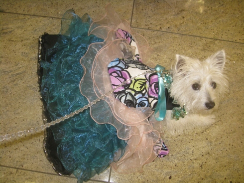 Cubby's gown at the prom