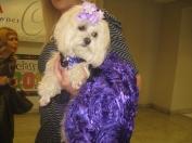 Puppy Prom 023