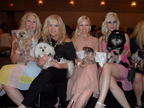 Fashionistas at Rescues Rock the Runway