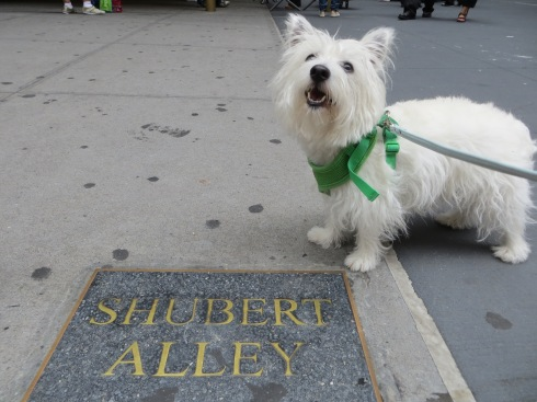 Shubert Alley gets ready for Broadway Barks