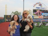 Bark in the Park Brooklyn Cyclones 013