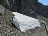 Snow in Glacier National Park