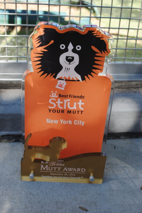 PupScouts win Golden Mutt Award Photo Credit:  Susan Godwin