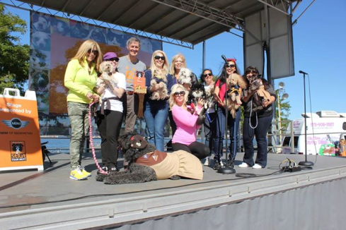 PupScouts accept their award! Photo credit:  Jim Ballard