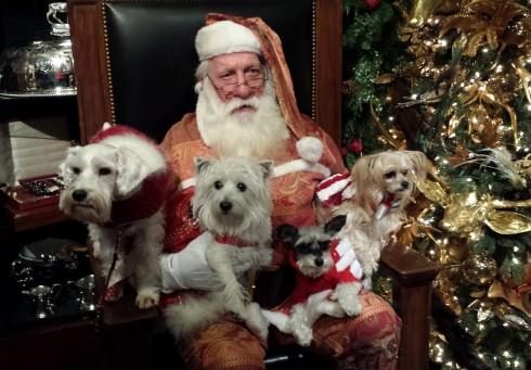 Sitting with Santa