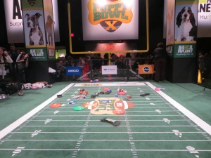 Puppy Bowl Experience in Times Square