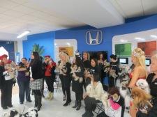 NY Pet Fashion Show 005