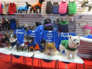 Modeling for BH Pet Gear