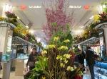Macy's Flower Show 020