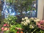 Macy's Flower Show 022